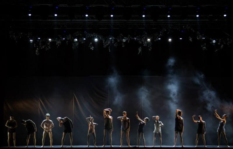 Impetus - balet neoclasic (36)