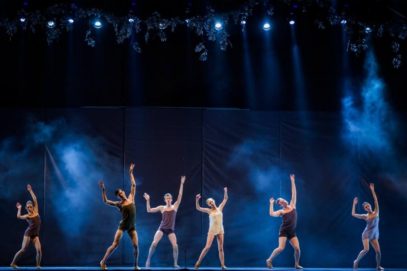 Impetus - balet neoclasic (37)